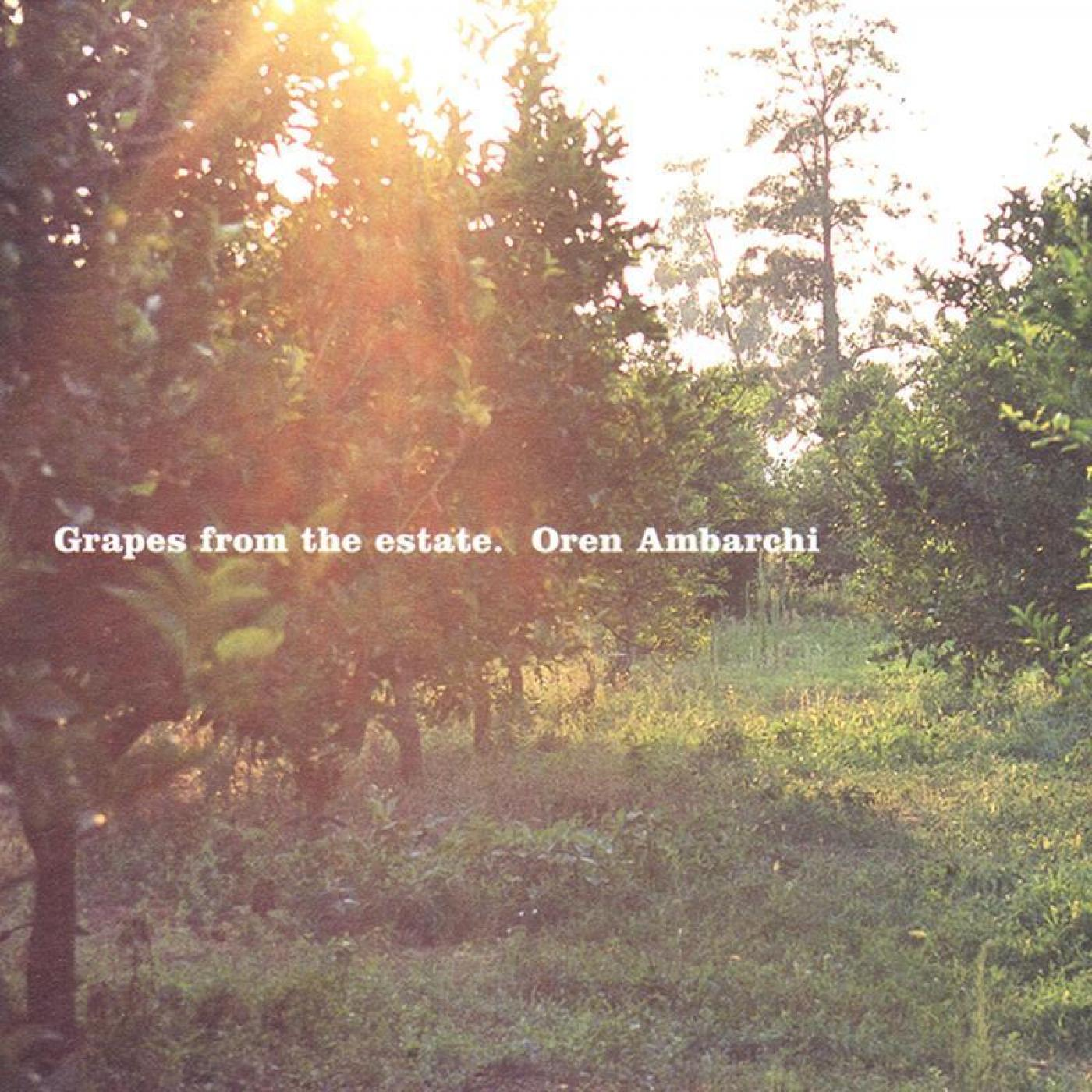 TO61 - Grapes from the Estate - Oren Ambarchi